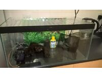 Fish Tank with Extras 12x12x24