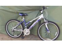 adult ladies reebok miami mountain bike
