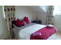 1 Bed flat available Short term