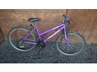 Women's moutain bike