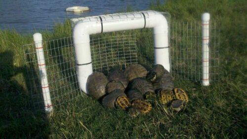 Floating Turtle Traps, No Bait Required, Great for Snapping Turtles, Humane