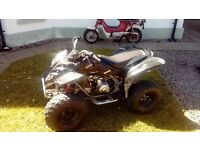 Good, tidy 110cc Quad with Reverse Gear.. selling as I need room.