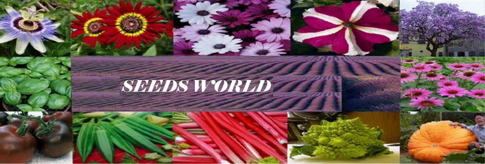 seeds-world-shop