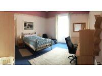Fabulous double room (with en suite bathroom) in Newington flat - suit post-graduate student