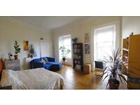 Spacious room with lots of light to rent in a shared flat in Tollcross Edinburgh (1 month only)