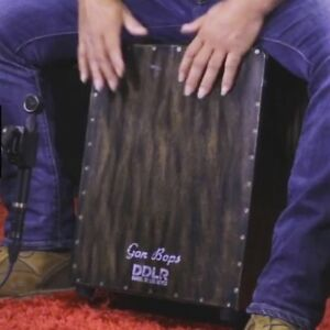 Professional Cajon Drum with Snare & Great Bass with gig case