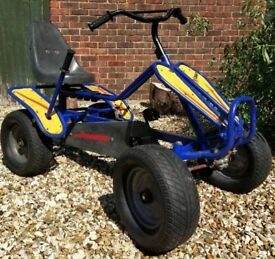 Kids / Adults Dino X-Quad Full Size Pedal Quad Bike *Well Used - Great Fun*