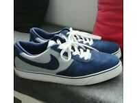 Mens Nike SB Trainers