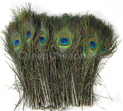 50pcs Natural Real Peacock Tail Eye Feathers for Decoration13 Inches AUFT