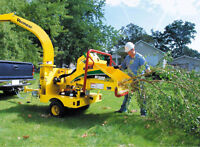 Tree removal, branch chipping, stump grinding
