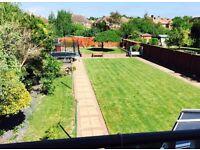 Gardening maintenance help required (tidying up the garden)
