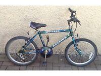 "Bike/Bicycle.BOYS RALEIGH "" MUSTANG "" MOUNTAIN BIKE. SUIT 6-9 YEARS"
