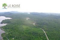 Très grands terrains à vendre, en nature, privé. Estrie.