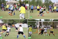 WEDNESDAY Evening Co-ed Soccer - Goalkeeper Wanted!