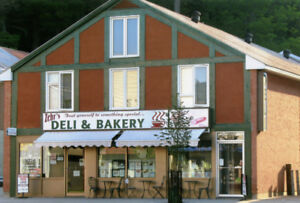 Great Investment Opportunity In Downtown Bancroft!