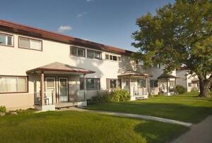 3 BEDROOM BLOWOUT - Recently Upgraded Suites Edmonton Edmonton Area image 14