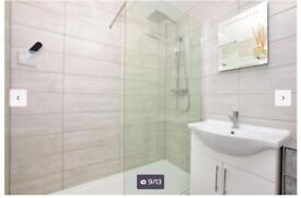 1 Bed Room Flat - Chigwell Abridge- With Private parking and private patio