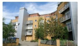 Large 2 bedroom 2 bath apartment, Whitefield