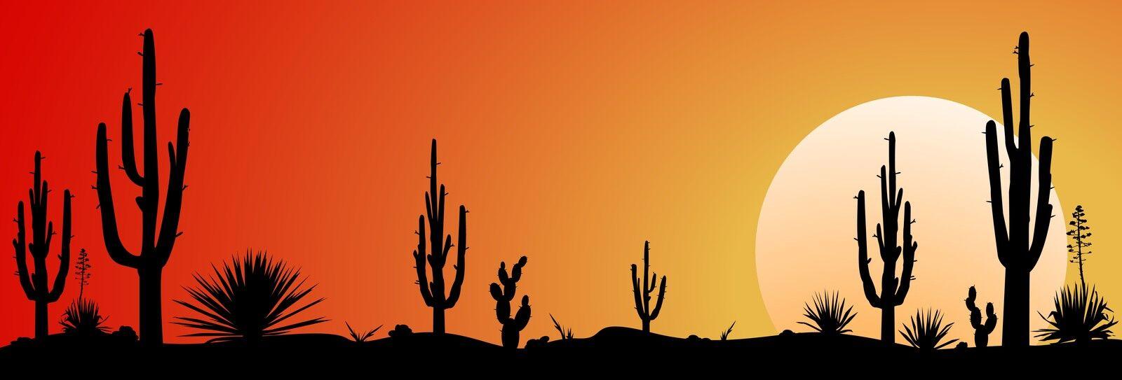 Hamiltons Cacti