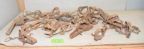20 vintage traps collectible trappers tool cabin rustic display lot T3