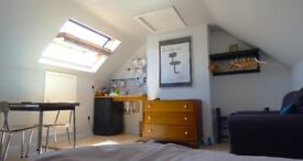 Ensuite double loft room with private kitchenette in family house
