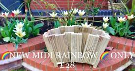 Midi Rainbow Planter only £28