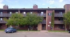 Glenwood Village- Rest of July's rent is FREE - 1 Bedroom...