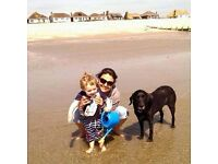 Experienced and responsible teacher and nanny available for summer holiday cover - flexible hours