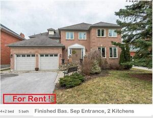 **** Great Detached Home Finished Basement, Aruora
