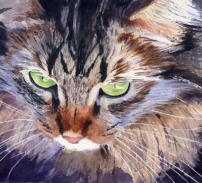 - Giclee PRINT Tabby Maine Coon Cat Art Painting Watercolor 8x10 brown realistic