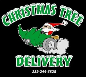 Christmas Tree Delivery To Your Home or Business