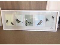 Ikea Olunda Bird Frame