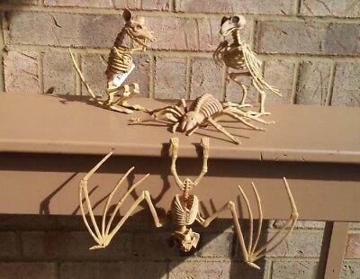 Skeleton Rat Crow Spider Hanging Vampire Bat Set of 4 Creatures Bones Halloween (Hanging Skeleton Spider)