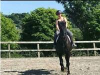 16.3hh ISH for part loan