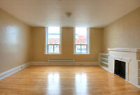 BRIGHT 1 BEDROOM SUITE, AVAILABLE NOW!! - DOWNTOWN INGERSOLL