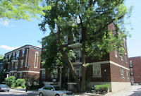 4½ Perfect Downtown 2-bedroom