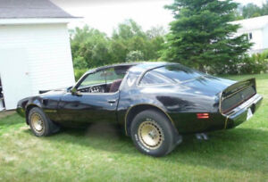 Trans am 1981 turbo