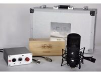 Se electronics Dual valve mic