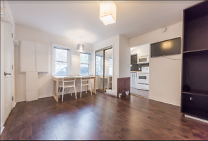 Newly Renovated and Airy 1 Bedroom w/ own Entrance!