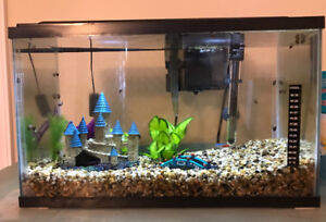 Established 10 gal fish tank -everything included