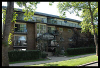 Furnished 1 Bedroom Suite Includes Everything in Garneau U of A!