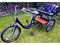 WANTED TREKIDOO/ TRIKIDOO ADULT TRIKE -- KIDS CARRIER