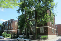 Perfect Downtown 3½ 1-bedroom