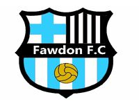Fawdon F.C looking for more additions to squad