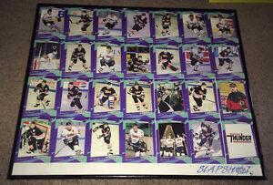 1993-94 Niagara Falls Thunder Framed Uncut Card Set Limited