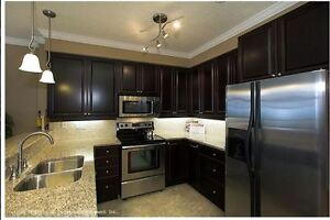 Modern Two Bedroom - Downtown - Best Building Amenities! London Ontario image 3
