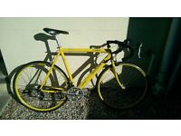 Road Bike (Fausto Coppi, Gavia)