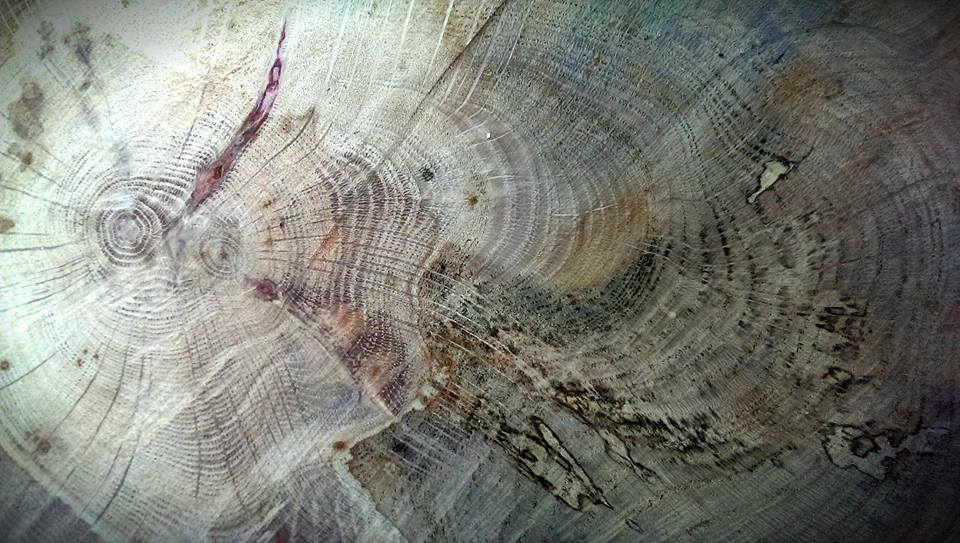 The Wooden Workshop AU