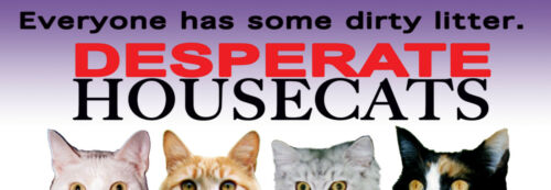 Desperate Housewives spoof (Parody) Kitty Humor - HOUSECATS BUMPER STICKER - NEW