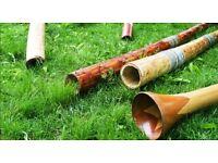 Collection of vintage didgeridoos